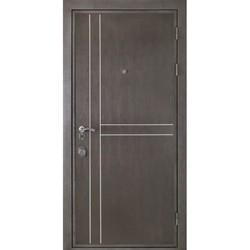 Входная дверь Stardis  Safe