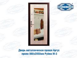 Дверь металлическая АРГУС правая проем 860х2050мм Рубеж М-3
